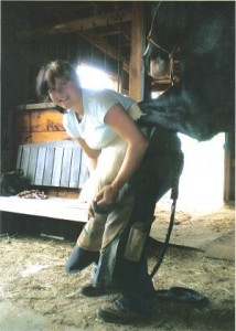 Carrie Daviduk, farrier, works on shoeing a horse