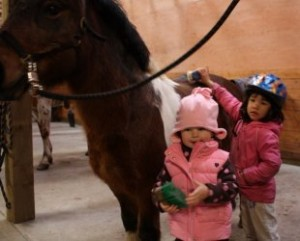 Grooming our pony in Pyramid Stables pre-school riding class.