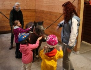 Pyramid Stables pre-school group greets a pony.