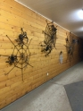 wall-of-spiders